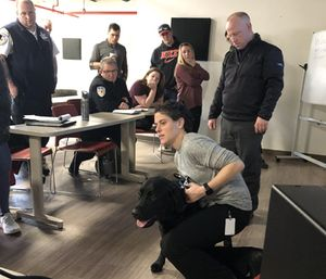 Armstrong Ambulance staff members received in-depth training from veterinarian Beth Eisenberg that would help them treat a K-9 injured in the line of duty. (Photo/AA)