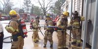 Has the fire service become its own patient?