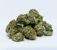 Medical marijuana: Is it worth the liability for EMS providers?