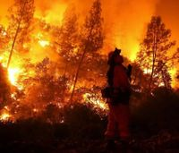 Calif. official demands $300M be spent annually on wildfire prevention