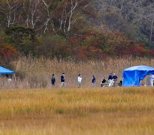 This photo from Wednesday, Oct. 25, 2017 shows emergency personnel work near temporary tents in a marshy area of Cow Meadow Park & Preserve in Freeport, N.Y., where the FBI says its gang task force found apparent human remains. (AP Photo/Seth Wenig, File)