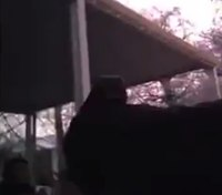 Video: Idaho cops cleared in shooting of armed felon