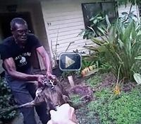 Video: Fla. cop TASERs pit bull attacking family