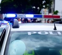 Police use of force, CEWs, and the mentally ill