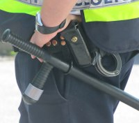 Vision 2029: Policing in the next decade and beyond