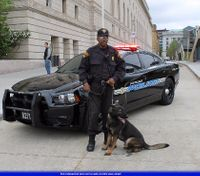 4 reasons why K-9s fail during SWAT operations