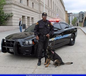 K-9 SWAT deployment tactics should also be used in a patrol environment. (Photo/Raymond Wambsgans via Flickr)