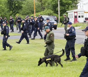 Teams of corrections officers and a police dog walk across a field towards woods near the Clinton Correctional Facility, Tuesday, June 16, 2015. (AP Image)