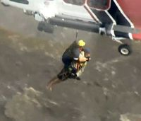 Video: Responders rescue man clinging to tree in rain-swollen river