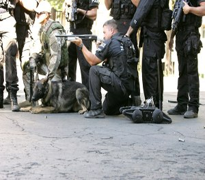 SWAT K9s can benefit from training with robots. (Image Robotex)