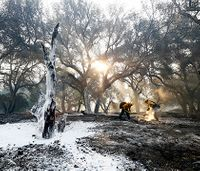 Massive Calif. wildfire nearly contained after more than a week