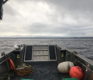 A Petersburg Volunteer Fire Department photo shows the forward deck of a boat on the search for a missing air ambulance. (Photo/PVFD)