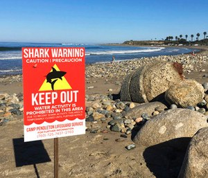 A sign warns beach goers at San Onofre State Beach after a woman was attacked by a shark in the area. (Laylan Connelly/The Orange County Register via AP)