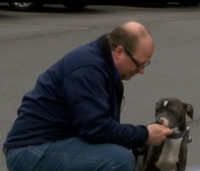 Paramedic rescues, adopts stray puppy