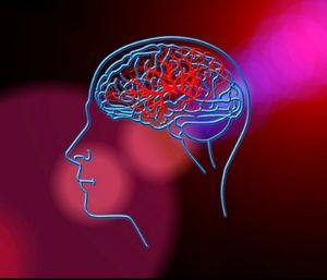 Stroke is the number one cause of disability in the United States. (Photo/Pixabay)