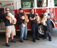 How a therapy dog organization is giving back to veterans, first responders