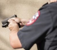 What are the costs of raising police use of force to a 'higher standard'?