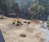 Viral photo: Firefighters rest on ground while battling wildfire