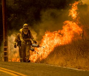 """""""We're about ready to havefirefightingat Christmas. This is very odd and unusual,"""" Gov. Jerry Brown said. (Photo/AP)"""
