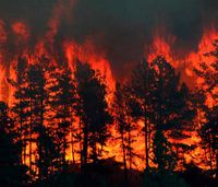 Technology, funding, legislation: Preventing and fighting wildfires
