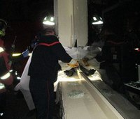 French firefighters free thief stuck in window