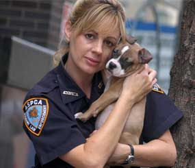 Investigator Annemarie Lucas of the Humane Law Enforcement division of the American Society for the Prevention of Cruelty to Animals is seen with a rescued dog in New York. (AP Image)