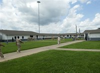 What would you do? Advice for working with female inmates