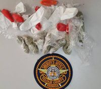 Woman charged with using kids to smuggle drugs into Ga. prison