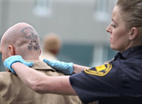 How gender affects offenders and officers in the criminal justice system