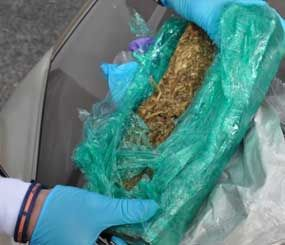 Photo of the marijuana found attached to the railcar at the Daikin plant on Thursday. (Photo courtesy Decatur Police Dept.)