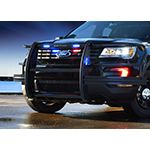 LED Lighted Push Bumpers