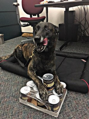 Because of the damage to his mouth, Puskas had to stick with soft food during his recovery. (Photo/Santa Ana PD)