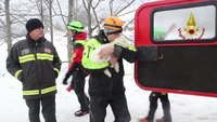 Italian firefighters rescue puppies after avalanche