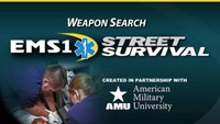What to look for during a weapon search
