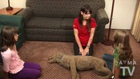 How to perform effective CPR on a pet