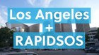 Los Angeles Police Department - RapidLite Experience