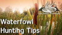 Waterfowl hunting tips for beginners