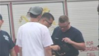 Fire dept. under fire for searching, finding firehouse thief