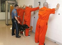 How good security helps inmate re-entry into society
