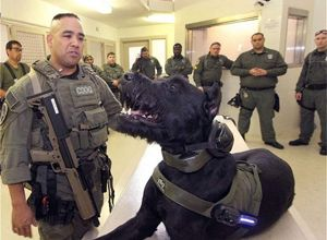 Joseph Garcia, U.S. Corrections Special Operations Group, and Max, the first corrections special operations K-9 in the U.S., during a cell extraction and riot control demonstration at the Flagler County Inmate Facility in Bunnell on Wednesday September 11, 2013. (Image News-Journal/DAVID TUCKER)