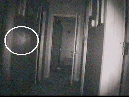 A still image from a Paranormal 911 investigation shows a mysterious orb. (Photo/Paranormal 911)