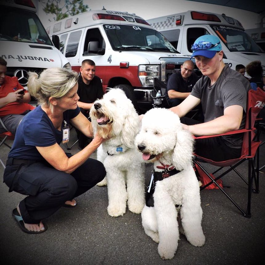 (Photo/AMR Therapy Dog Team Facebook Page)