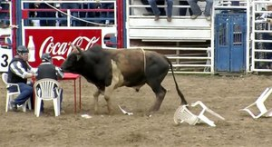 The crowd favorite is the convict poker event in which four inmate cowboys sit around a table in the middle of the arena to play poker and a bull is released. (Photo/Lousiana State Penitentiary)