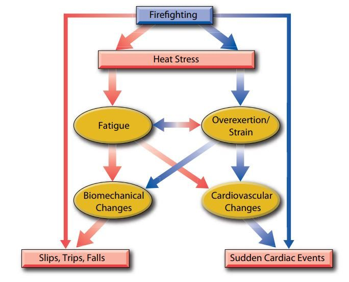Figure 1. Image Source: Firefighter Fatalities and Injuries: The Role of Heat Stress and PPE. 2008. Firefighter Life Safety Research Center. Illinois Fire Service Institute. University of Illinois at Urbana-Champaign Illinois.