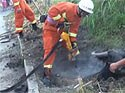 Firefighters rescue trapped pregnant buffalo