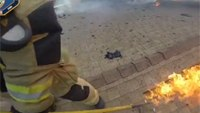 Privacy questioned as firefighters embrace helmet cams