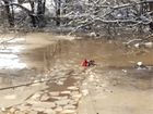 Firefighters rescue 2 dogs from icy river