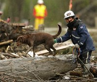 Active search ends for bodies in Wash. mudslide